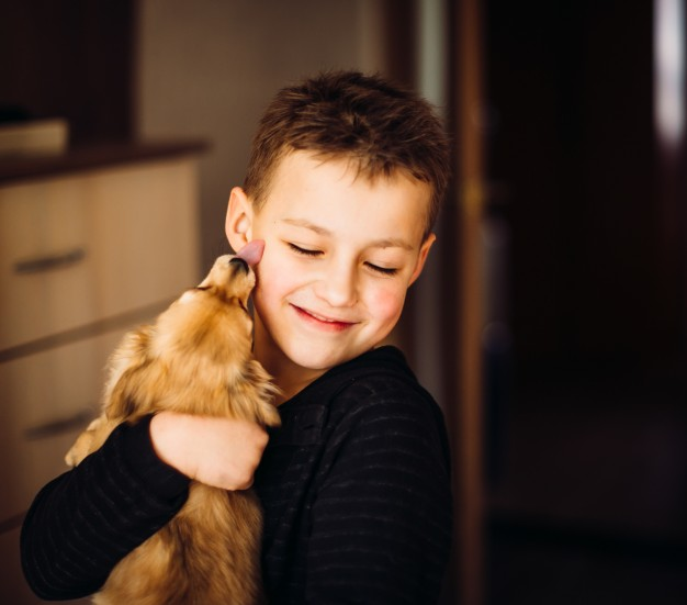600 Gambar Anak Menyayangi Hewan HD Terbaru