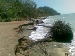 Hilangnya Pesisir Pantai di Indonesia