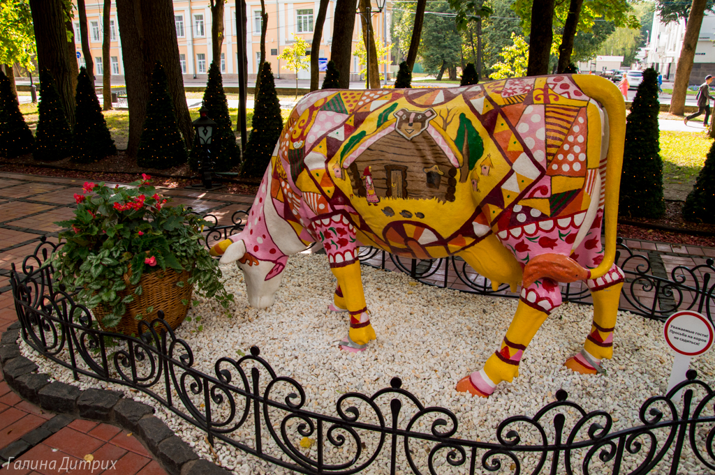 Корова в Русском дворе фото