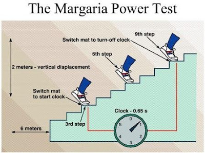 Margaria-Kalamen Power Test to Measure Athletes Power