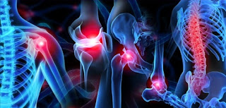 http://www.jointsreplacementindia.com/physiotherapy.html