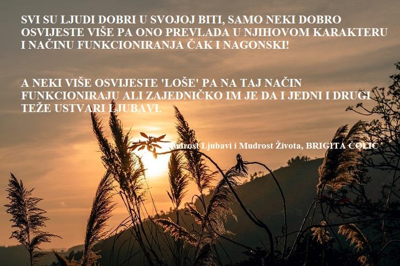 Svašta po nešto - Page 9 Igor-ovsyannykov-219655