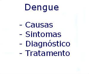 Dengue causas sintomas diagnóstico tratamento prevenção riscos complicações