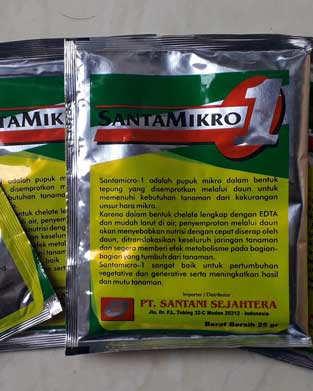 Santamikro1