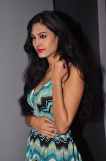 Actress Shweta Jadhav Pictures at Spa Ceylon Luxury Ayurveda Curtain Raiser  0062