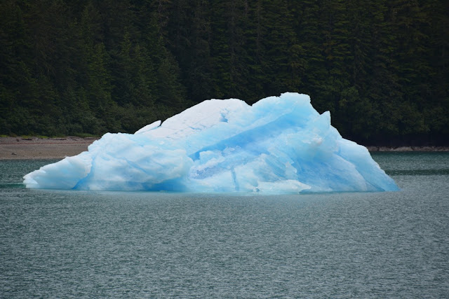 Tracy Arm blue ice