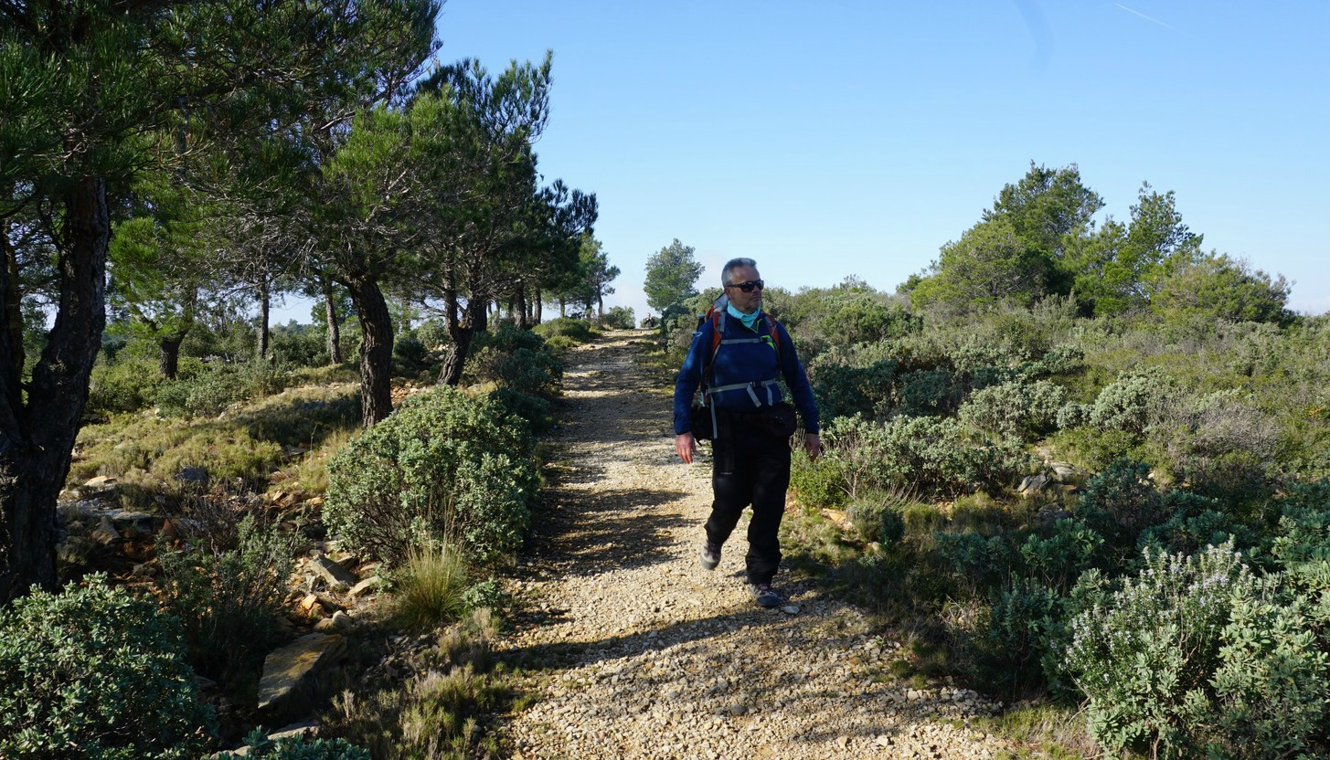 GR51 trail to Couronne de Charlemagne