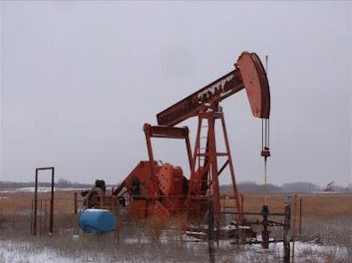 cavalo de pau petroleo