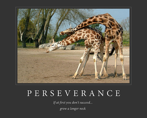 Persistence Motivational Quotes Cartoon: Funny Picture Clip: Best Demotivational Posters