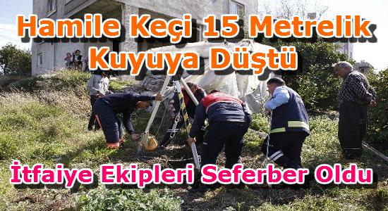 ERDEMLİ, ERDEMLİ HABER, ERDEMLİ SON DAKİKA, MERSİN, Mersin Haber,