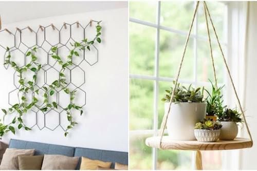Dekorasi dinding rumah dengan tanaman