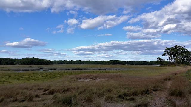 Kittery salt marshes