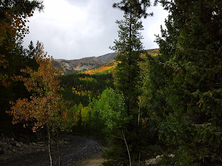 View of the fall colors up Middle Fork road.