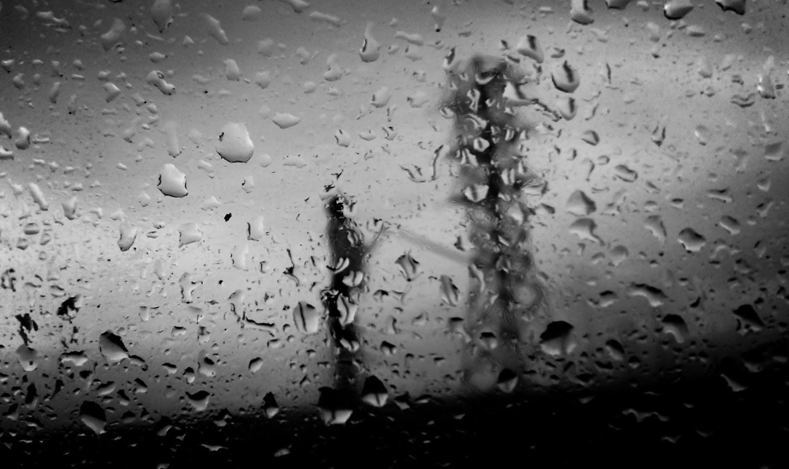Chụp ảnh dưới trời mưa giúp bức hình của bạn thêm phần lãng mạn và độc đáo hơn, chụp ảnh dưới mưa không nhất thiết phải chụp trong lúc mưa, ...