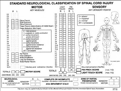 A Cartoon Guide to Becoming a Doctor: Evaluating Spinal