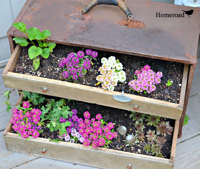 Vintage toolbox garden DIY filled with flowers
