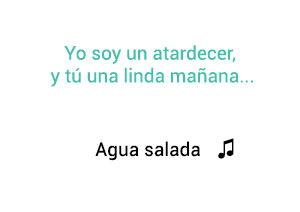 Vicente Fernández Chente Agua Salada significado de la canción.