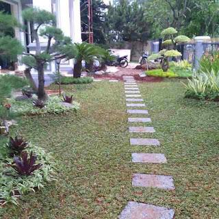 Jasa Pembuatan Taman di Tangerang Selatan