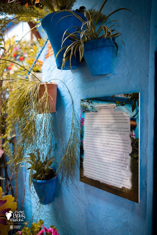 pared azul y macetas de barro pintadas azul