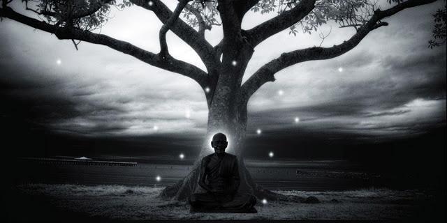 A%25C4%259Fa%25C3%25A7-Meditasyonu1.jpg