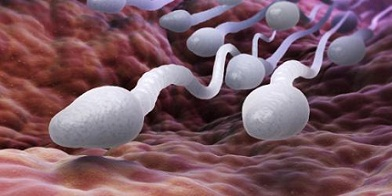 Natural Remedies To Boost Sperm Count And Male Fertility That Are Safe by Richard Luis