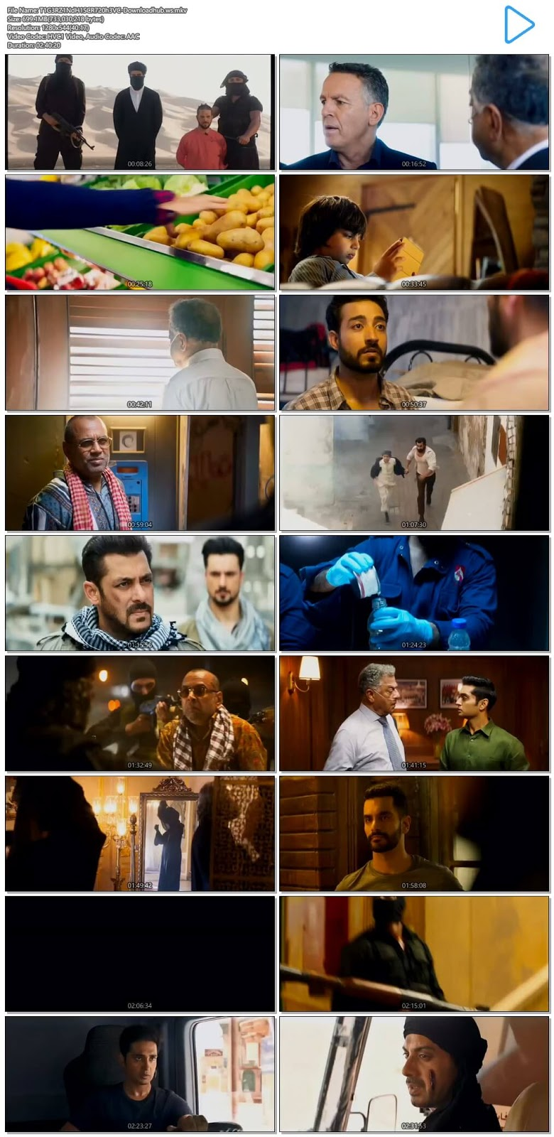 Tiger Zinda Hai 2017 Hindi 720p HEVC DVDScr