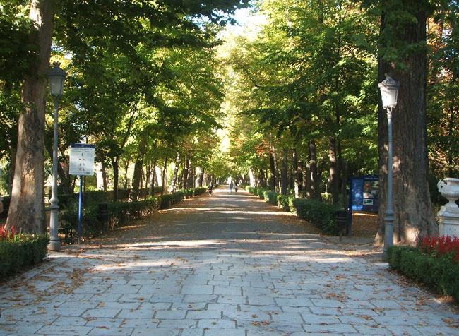 Aranjuez jard n del pr ncipe paisaje libre for Los jardines de aranjuez