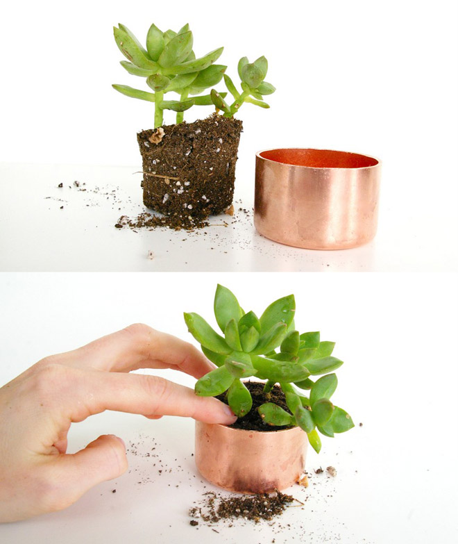diy mini copper planters poppytalk. Black Bedroom Furniture Sets. Home Design Ideas