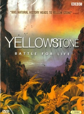 Xem Phim Cuộc Chiến Sinh Tồn - Yellowstone: Battle for Life