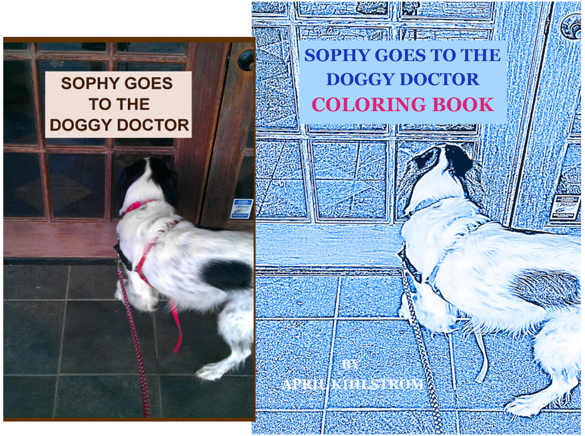 SOPHY GOES TO THE DOGGY DOCTOR