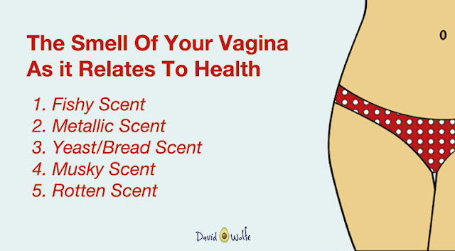 The Vagina – Should It Smell This Way?