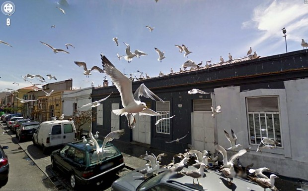 Google Street View Photos-23