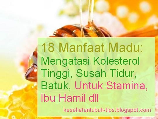 Manfaat Madu: Mengatasi Kolesterol Tinggi, Susah Tidur, Batuk, Untuk Stamina, Ibu Hamil dll