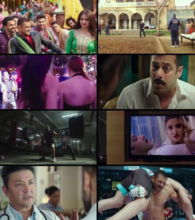 Sultan 2016 Hindi 480p HD DVDScr
