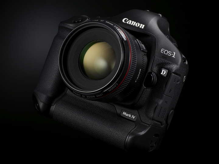 Michael Daniel Ho - The Wildlife Ho-tographer: Canon EOS-1D X vs
