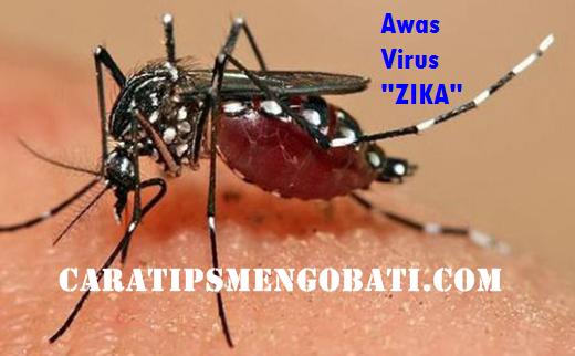 Ancaman Virus Zika