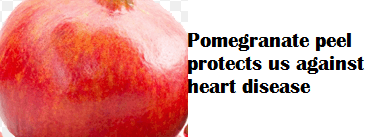 Pomegranate peel protects us against heart disease