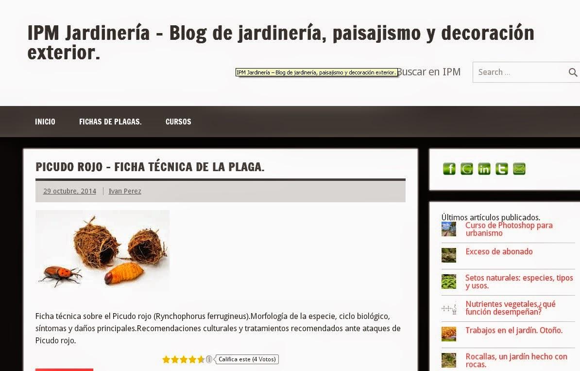 Poda y tala de arboles y palmeras en valencia ipm for Articulos de jardineria