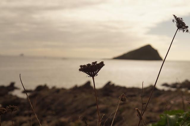 Wembury Point beach and the Great Mewstone Devon