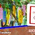 Actividades: Taller de Tanabata