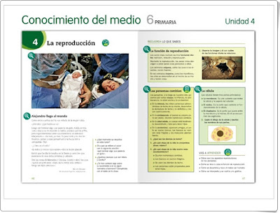 http://www.juntadeandalucia.es/averroes/centros-tic/41009470/helvia/aula/archivos/repositorio/0/194/html/recursos/la/U04/index.html
