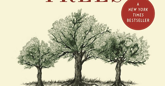 Book Review: THe Hidden Life of Trees