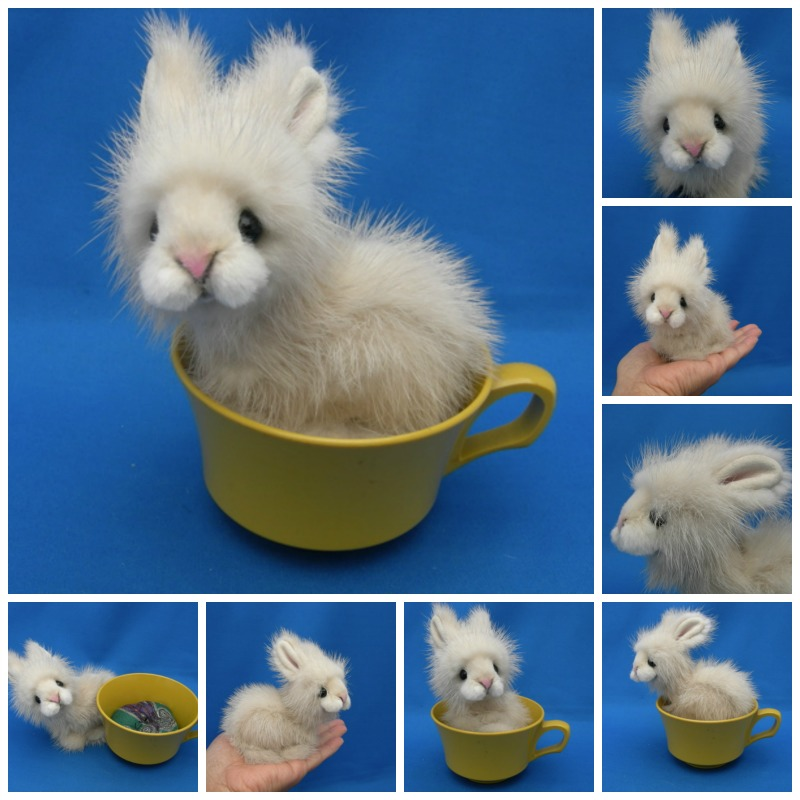 Teacup Bunnies | www.pixshark.com - Images Galleries With ...