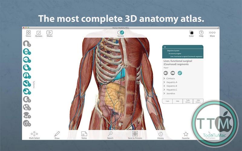 Human Anatomy Atlas v7.4.01 - TodoTuMac