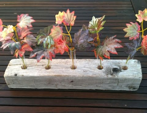 driftwood piece with test tubes filled with leaves
