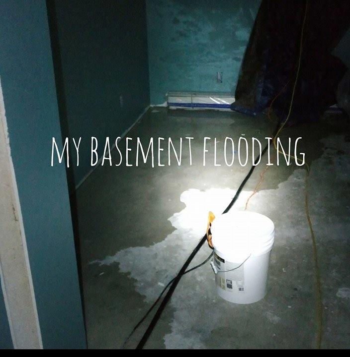 My Basement Is Flooding What Can I Do: PortalElements: Floods In Life And The Living Water