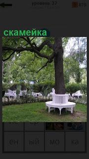 на поляне растет дерево, вокруг которого сделана скамейка