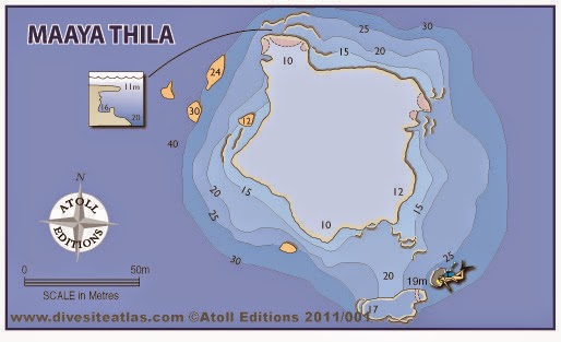 Best Places To Go Scuba Diving On Earth | Maaya Thila Dive Site Map Maldives