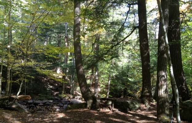 hiking the Western Uplands Backpacking Trail in Algonquin Park
