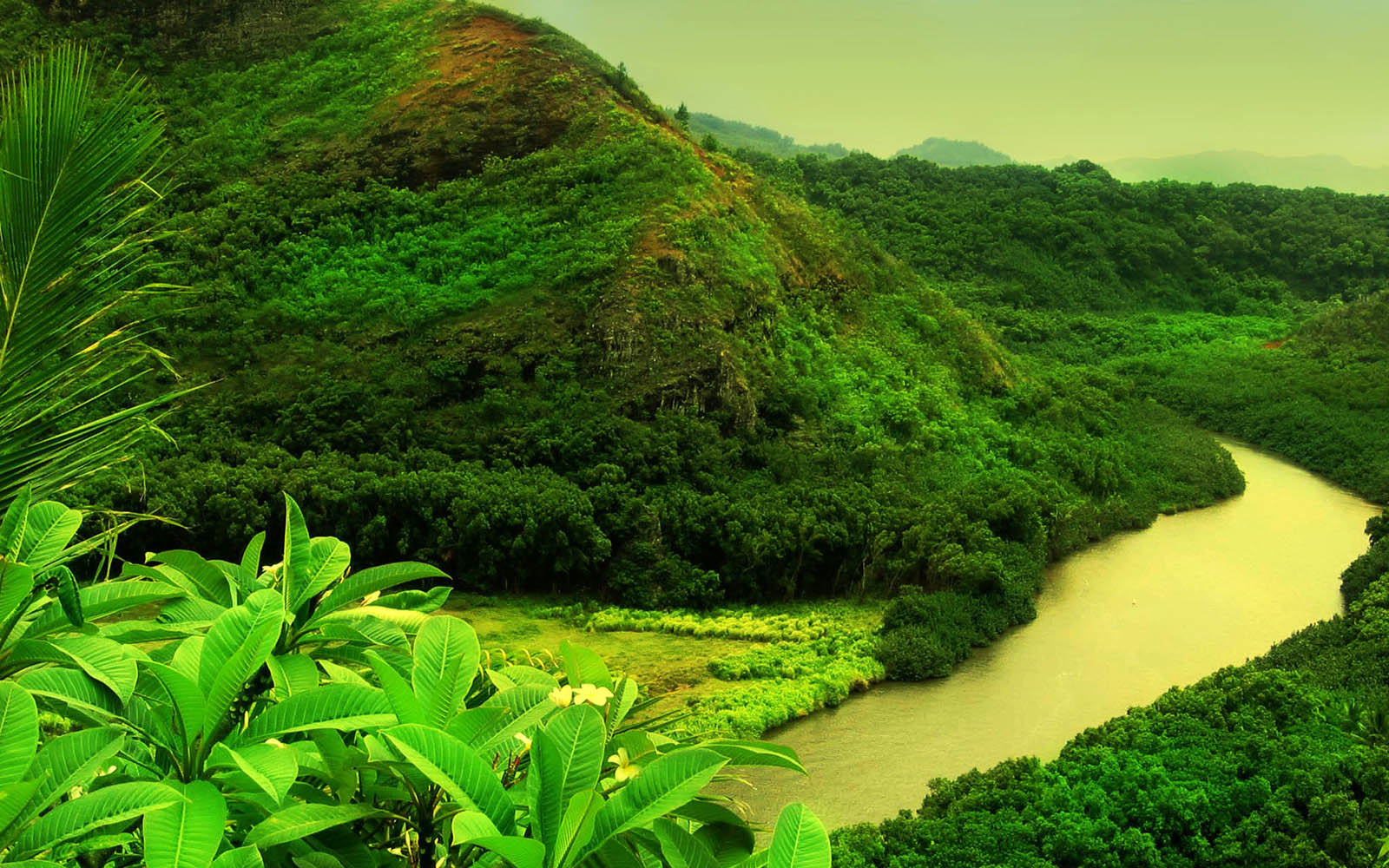 27492 best beautiful nature background images ✓ free stock photos download for commercial use in hd high resolution jpg images format. Green Nature Wallpapers:wallpapers screensavers